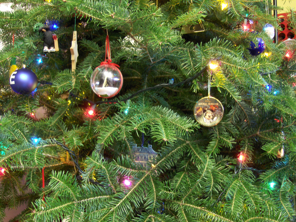 Christmas and The Real Meaning of Business — Wilson Growth Partners